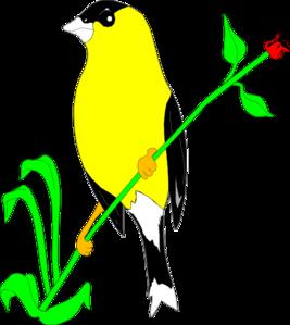 Goldfinch Clip art.