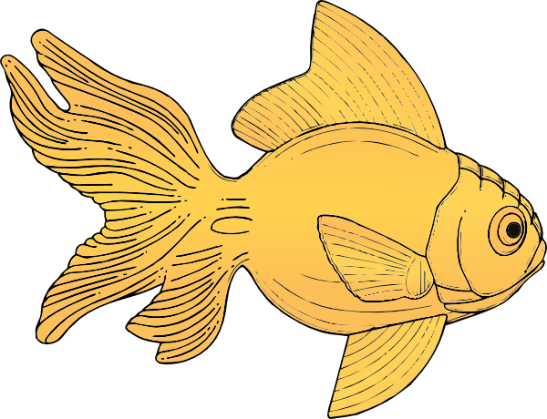Gold Fish Clip Art at Clker.com.