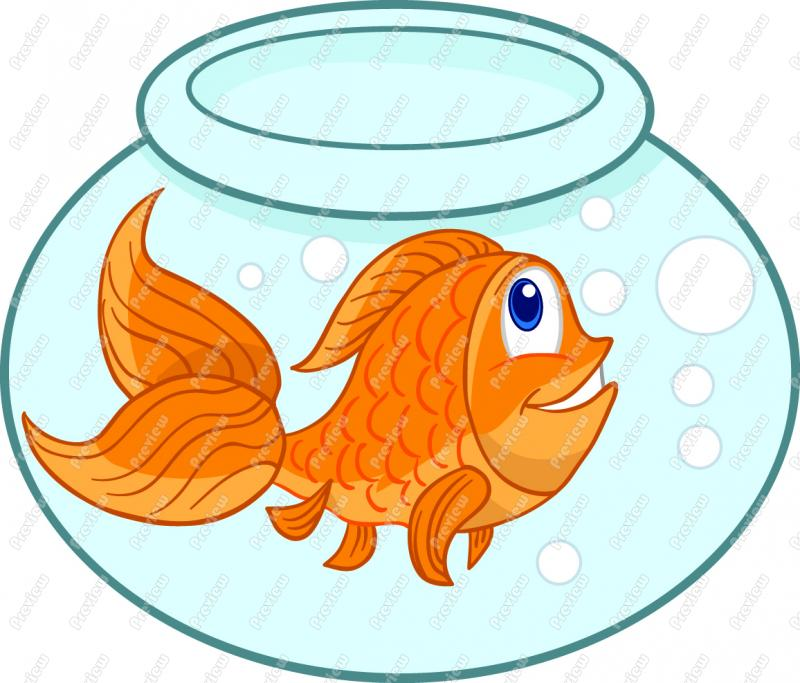 Gold fish clipart - Clipground