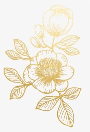 Gold Flower PNG, Transparent Gold Flower PNG Image Free Download.