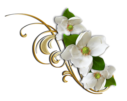White Flower with Gold Decorative Elemant Clipart.