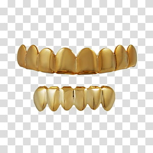 Gold teeth transparent background PNG cliparts free download.