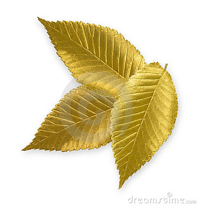 Gold leaf clipart.