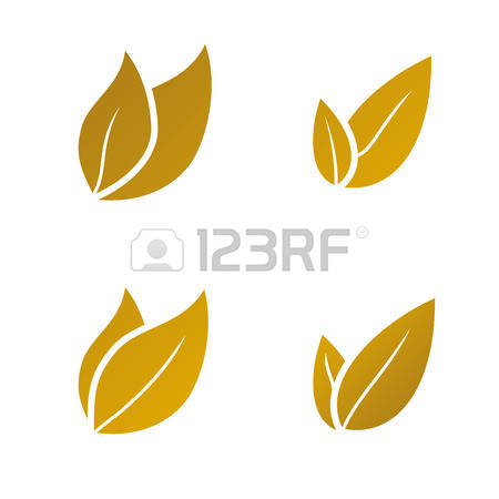 60,764 Gold Leaf Stock Vector Illustration And Royalty Free Gold.