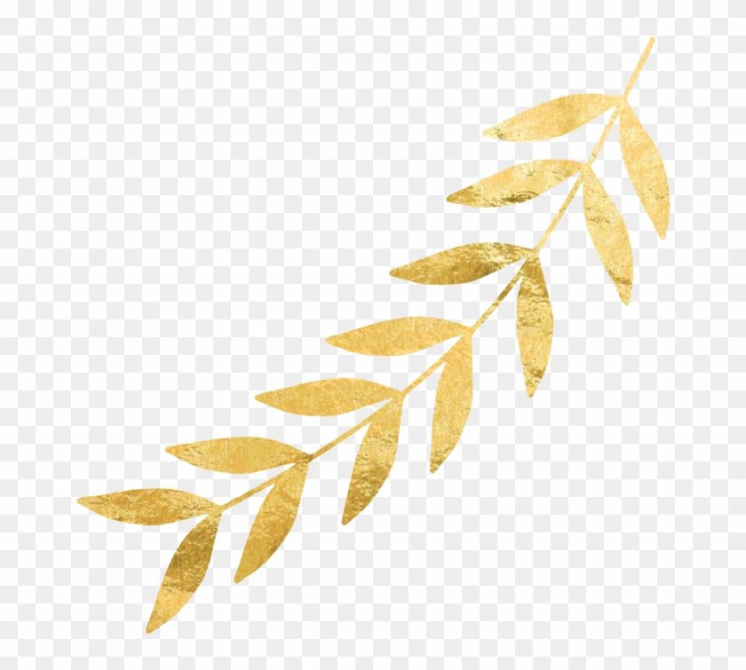 Leaves Png Free Download On Mbtskoudsalg Wedding.