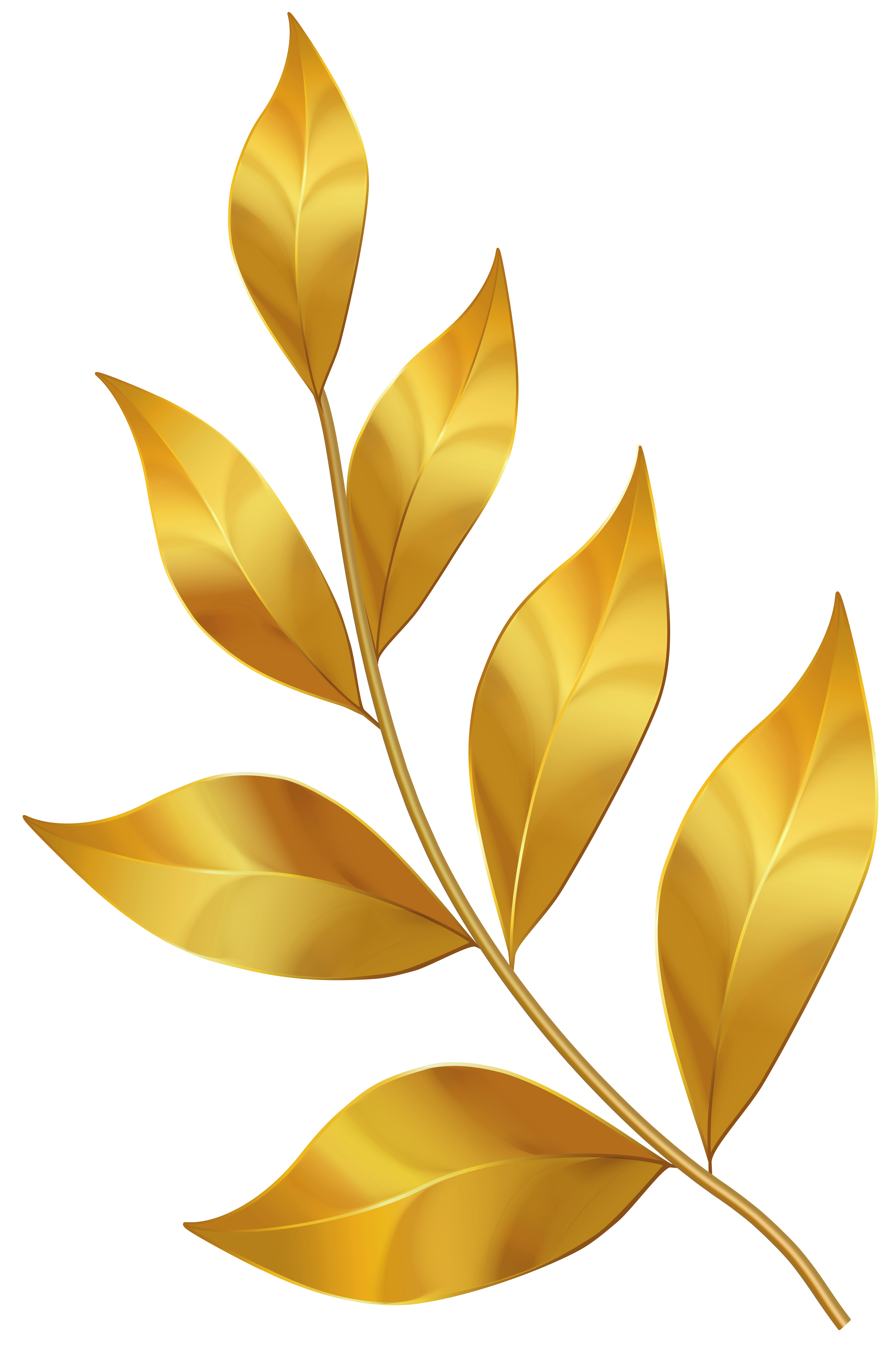 Gold Leaves PNG Clipart.