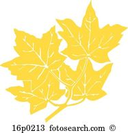 Gold maple leaves Clip Art and Illustration. 4,837 gold maple.