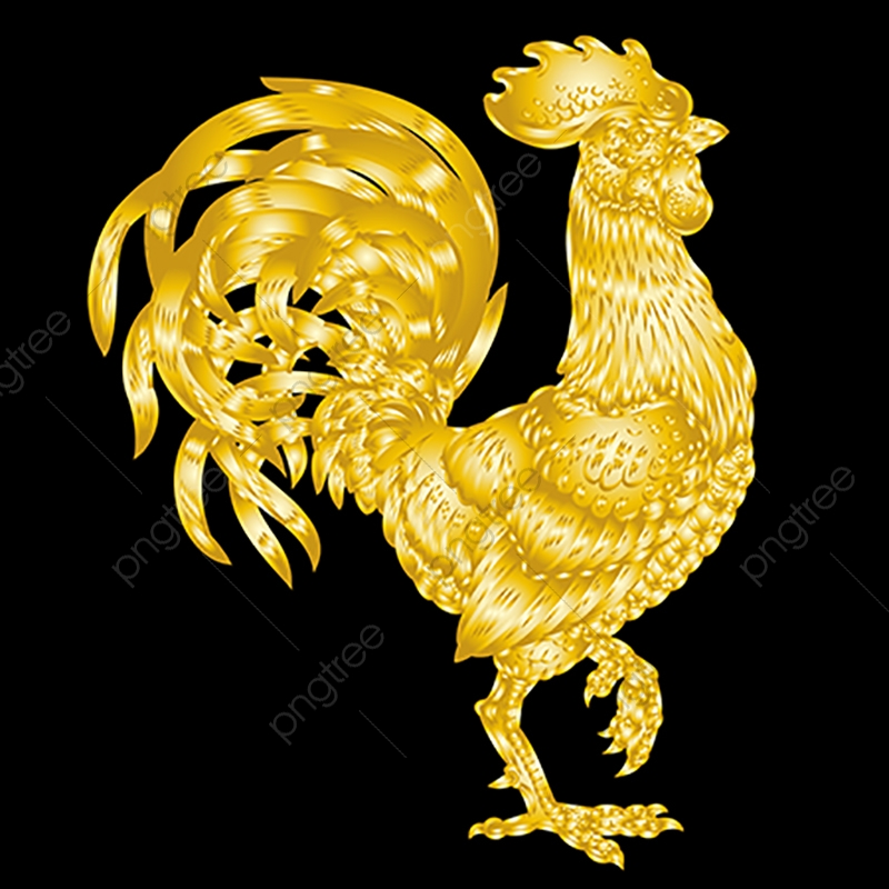 Vector Illustration Golden Rooster On Black Background, Year, New.