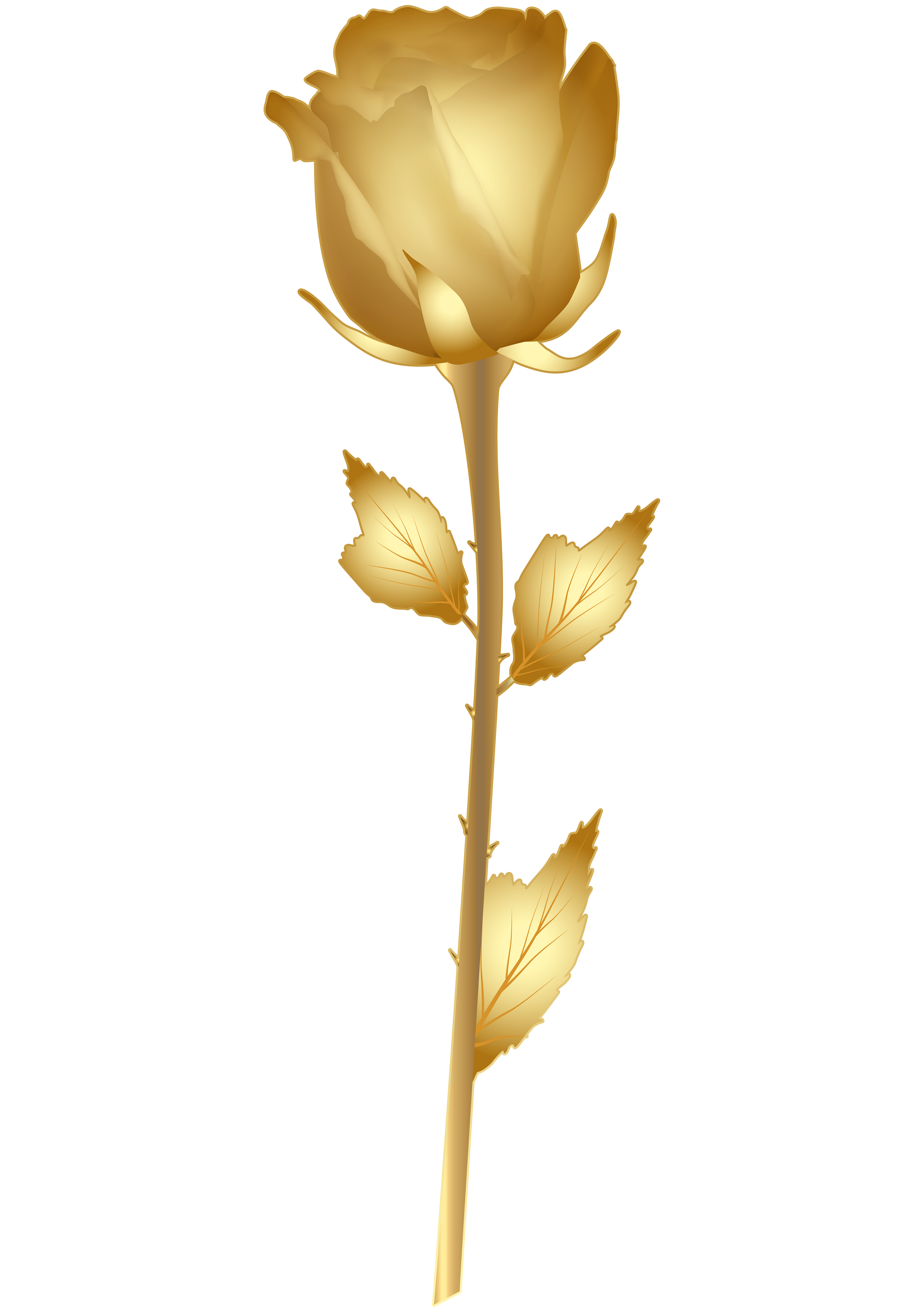 Beautiful Gold Rose PNG Clip Art Image.