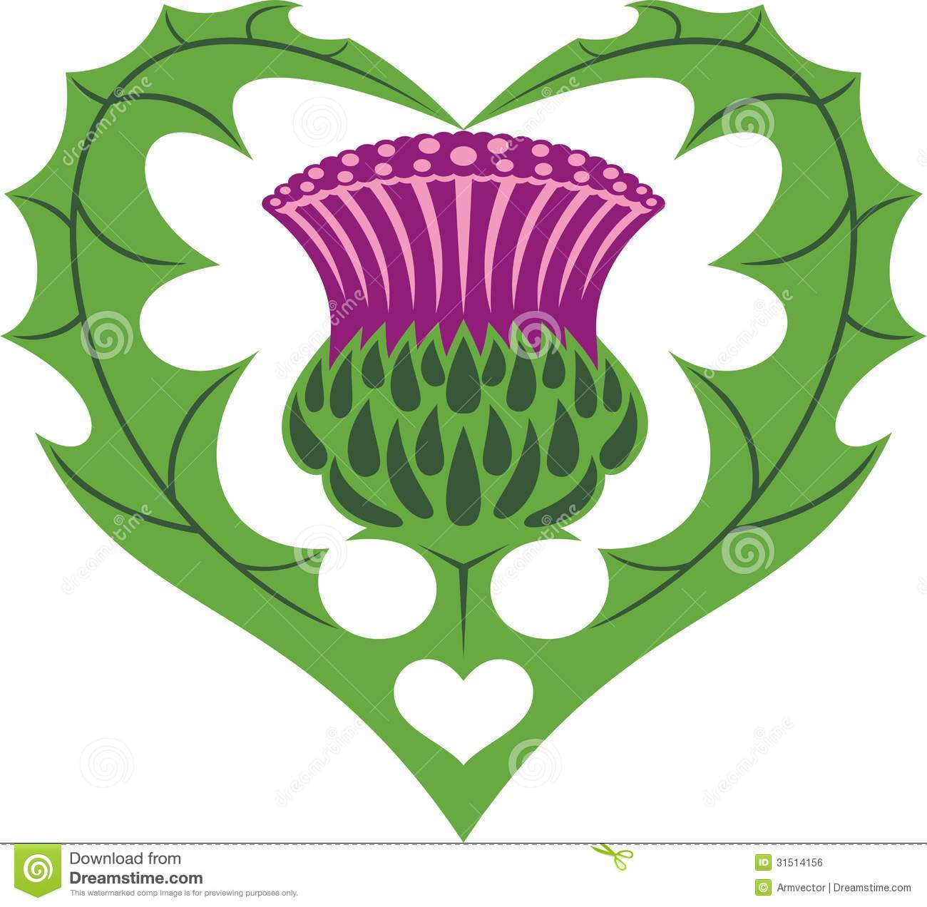 1000+ images about Scottish Thistles on Pinterest.