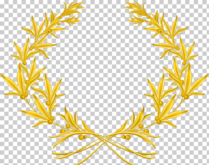 Laurel wreath Olive wreath Gold , wreath, gold leaves border.