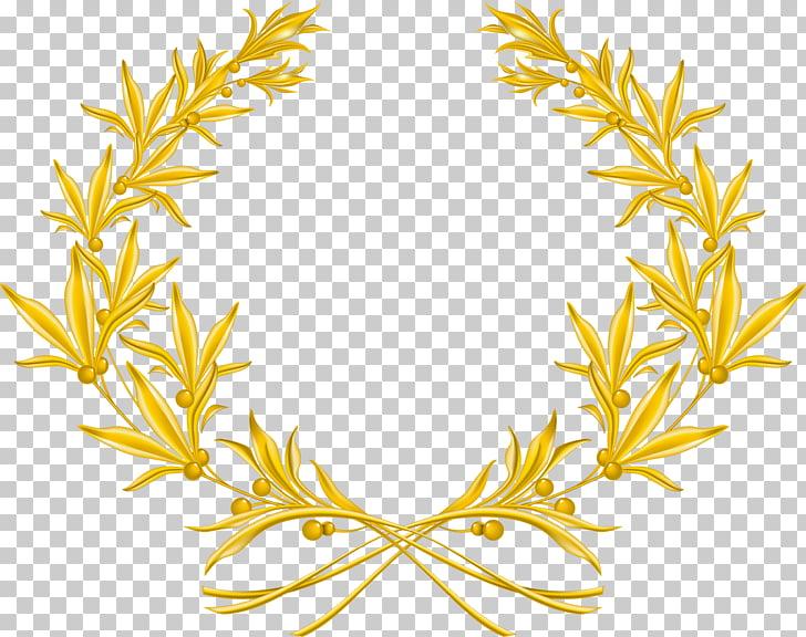 Laurel wreath Olive wreath Gold , wreath, gold leaves border.