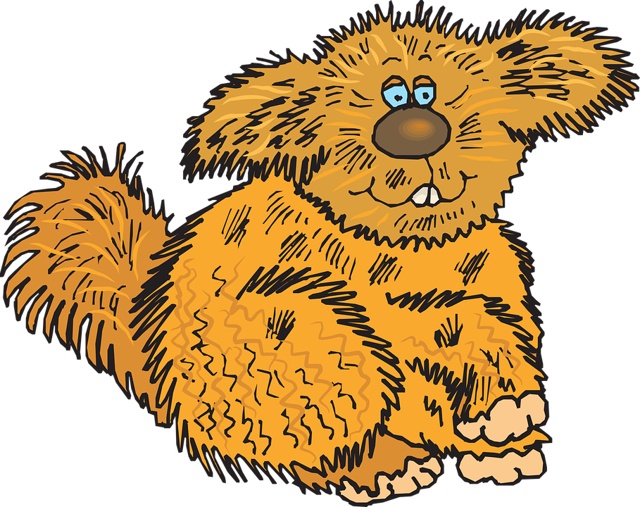 Free vector graphic: Hair, Animal, Creature, Fuzzy, Fur.