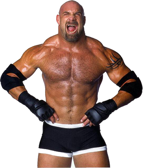 Download Bill Goldberg PNG Photos 068.
