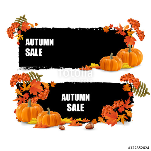 Golden autumn, seasons sale, leaves of bouquet and rowan berry.