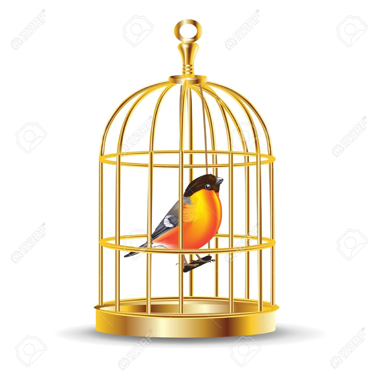 Golden Bird Cage With Bird Inside Isolated Royalty Free Cliparts.