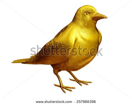 Canary Vector Domestic Songbird Concept Flat Stock Vector.
