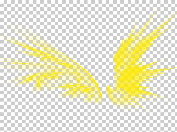 Graphic design Yellow Pattern, Golden wings PNG clipart.