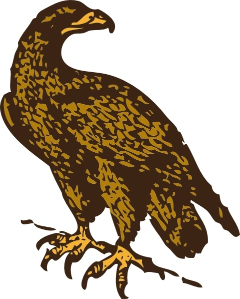 Golden Eagle clip art Free vector in Open office drawing svg.