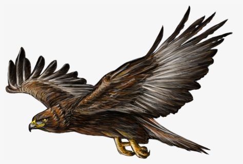 Free Golden Eagle Clip Art with No Background.