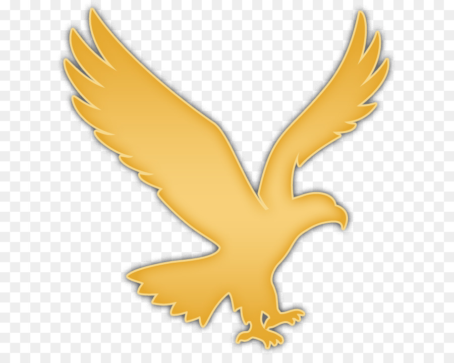 Eagle Bird png download.