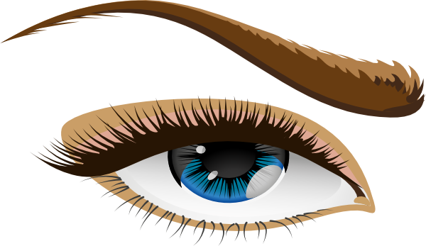 Human Eye 2 Clip Art at Clker.com.