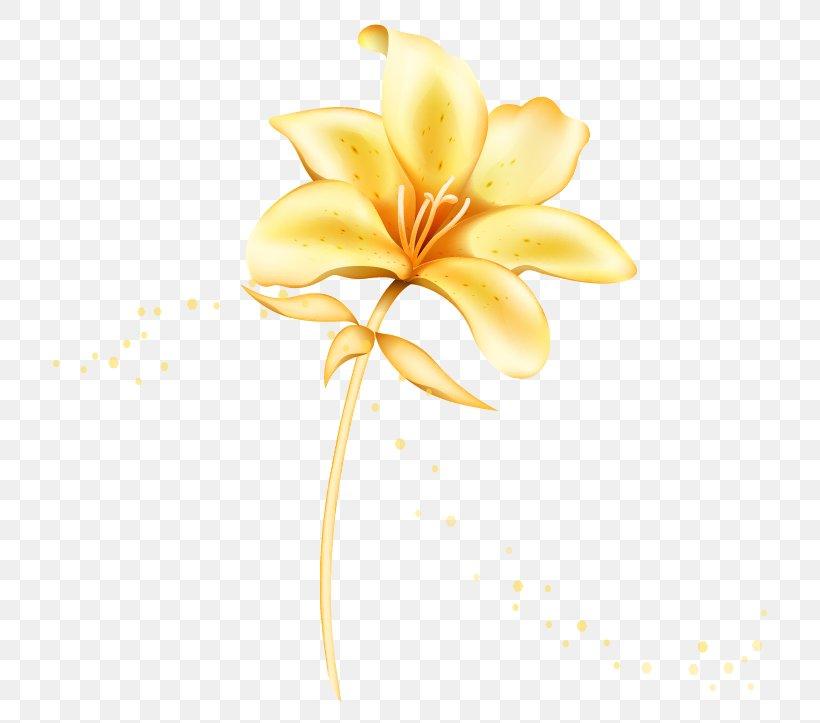 Flower Euclidean Vector Lilium, PNG, 805x723px, Flower, Gold.