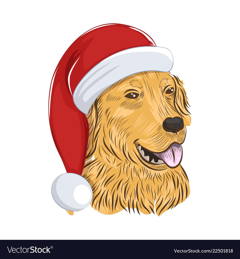 Golden retriever wears christmas hat.