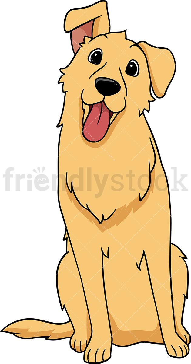 Golden Retriever Dog Tilting Its Head.