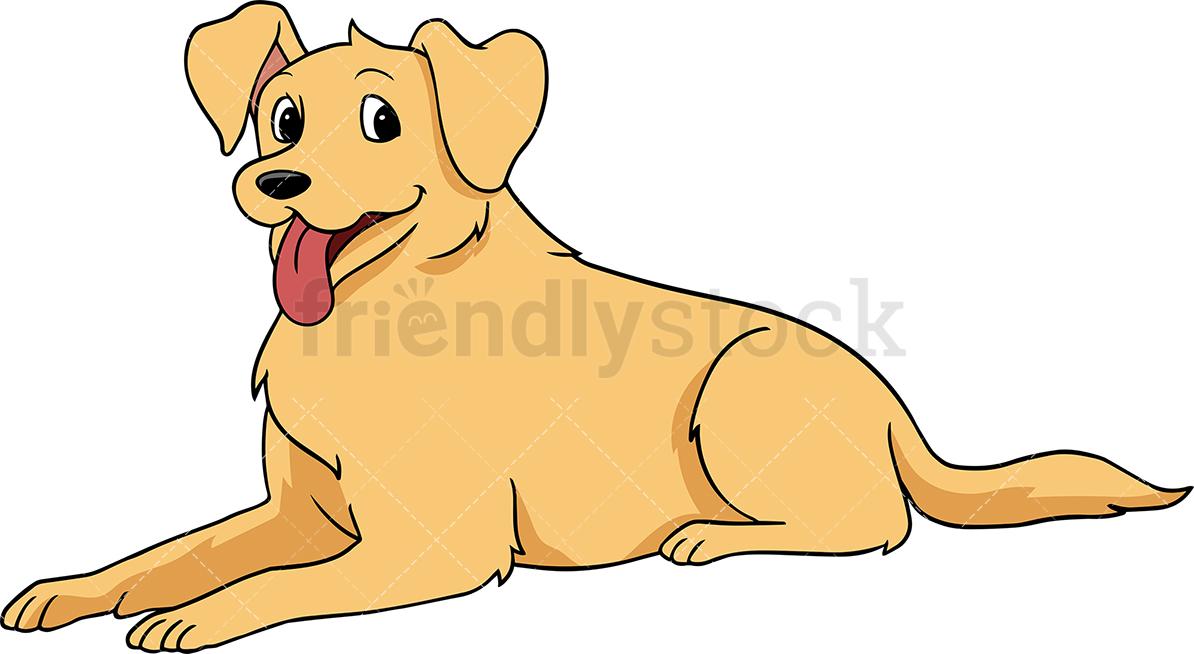 Golden Retriever Dog Lying Down.