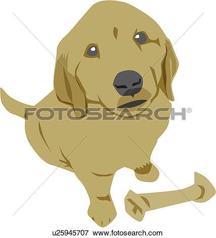 Clip Art of puppy, mammal, dog, pet dog, pet, golden retriever.