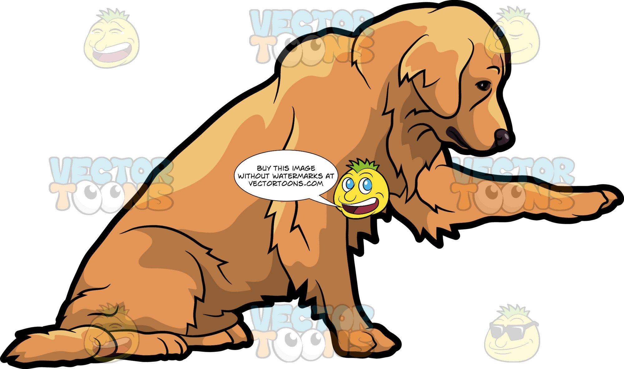 A Playful Golden Retriever Pet Dog.