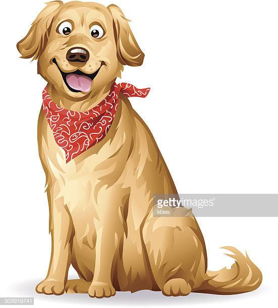60 Top Golden Retriever Stock Illustrations, Clip art, Cartoons.