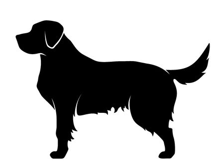 1,542 Golden Retriever Cliparts, Stock Vector And Royalty Free.