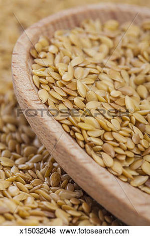 Pictures of Golden Flax Seeds x15032048.