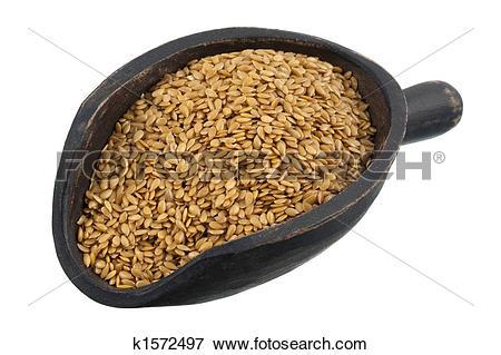 Picture of scoop of golden flax seeds k1572497.