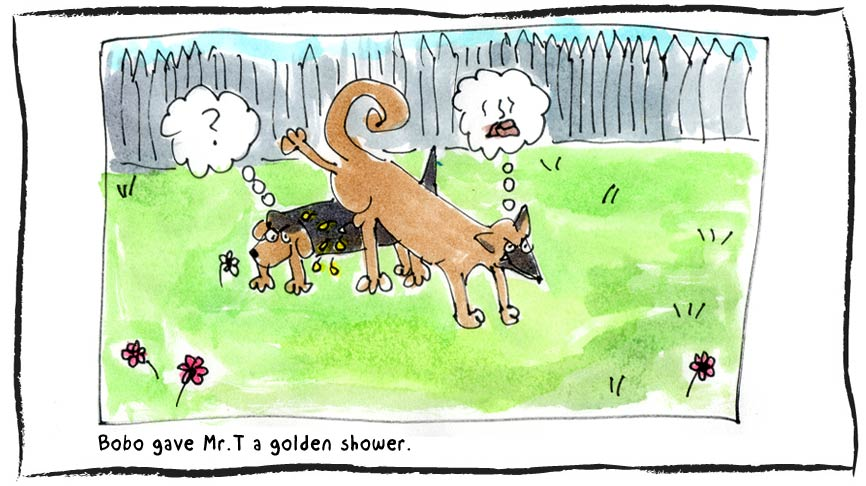 Golden Shower » The Hill Site.
