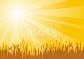 Golden Sky Background stock vectors.