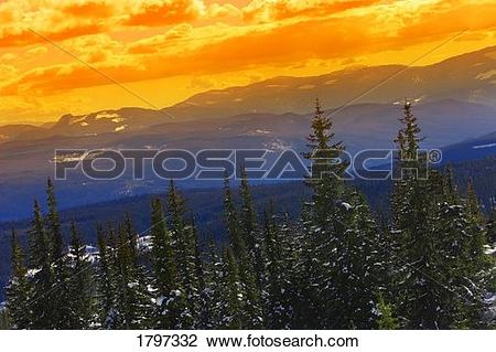 Stock Photo of Golden sky above wilderness 1797332.
