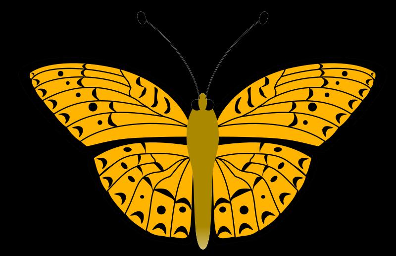Free Golden Yellow Butterfly Clip Art.