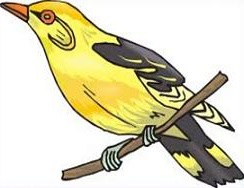 Free Eastern Goldfinch Clipart.