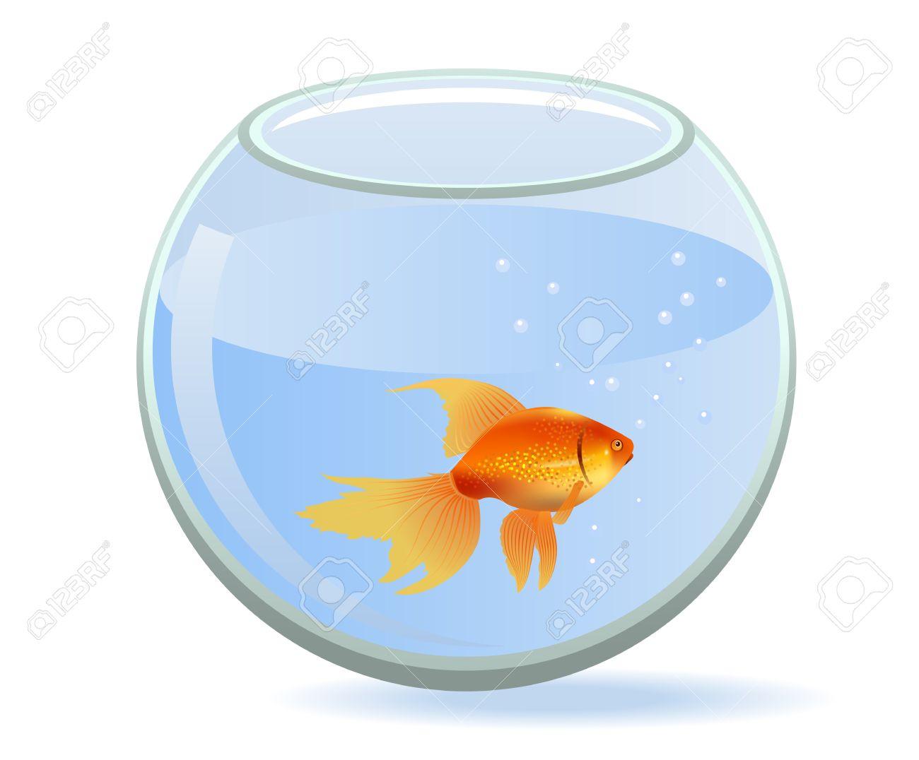 Aquarium Bowl Clipart.