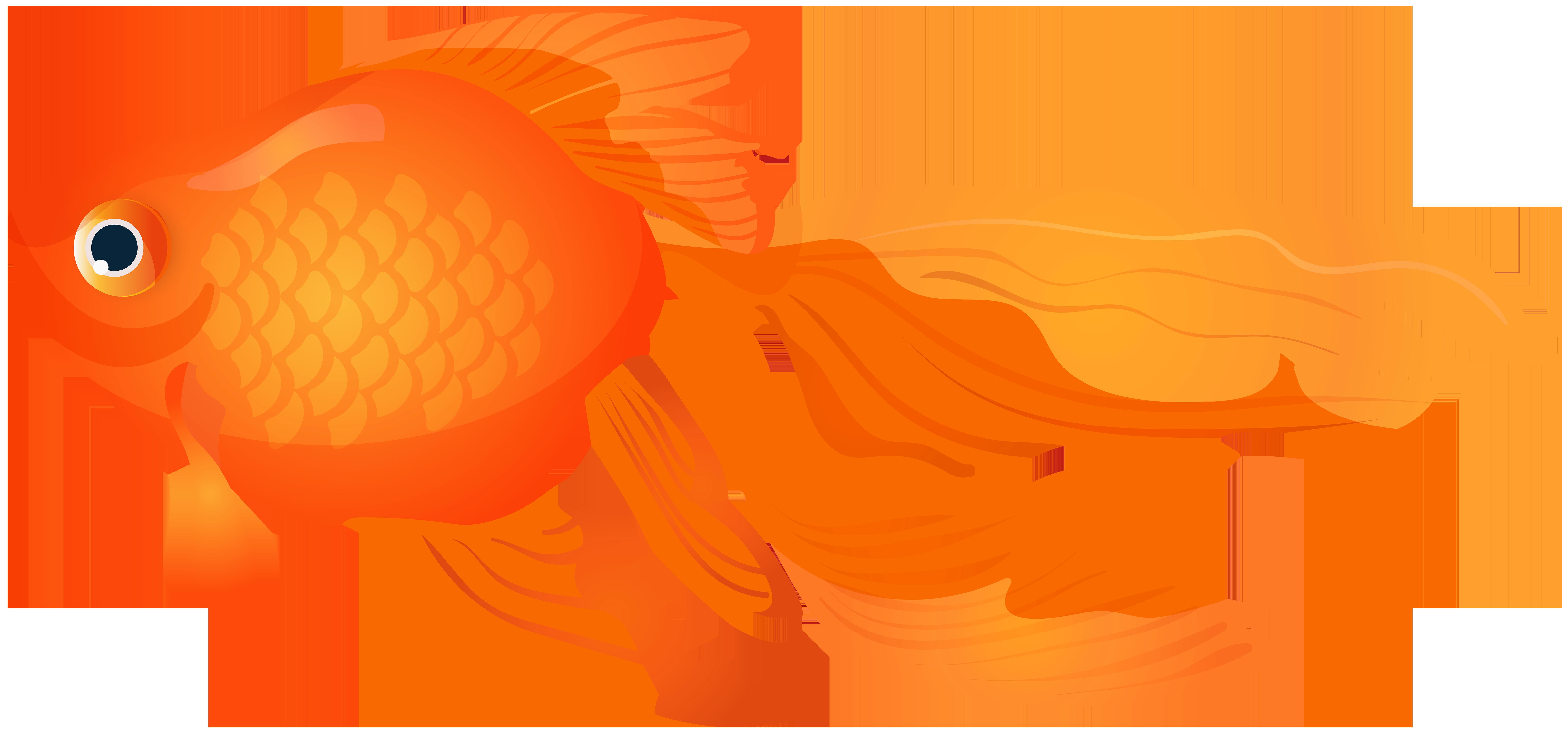 Goldfish Transparent PNG Clip Art Image.