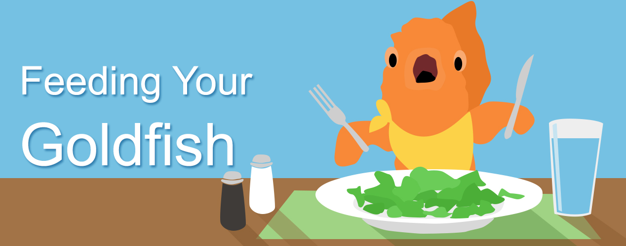 goldfish food label clipart