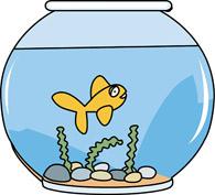 Free Goldfish Bowl Cliparts, Download Free Clip Art, Free.