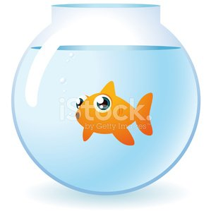 Goldfish in a bowl staring at camera with bubbles Clipart.