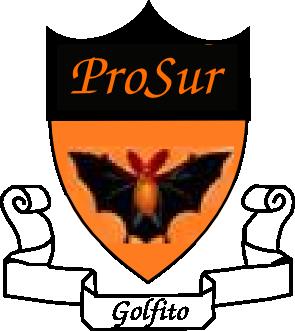 Fundacion UdG (ProSur).