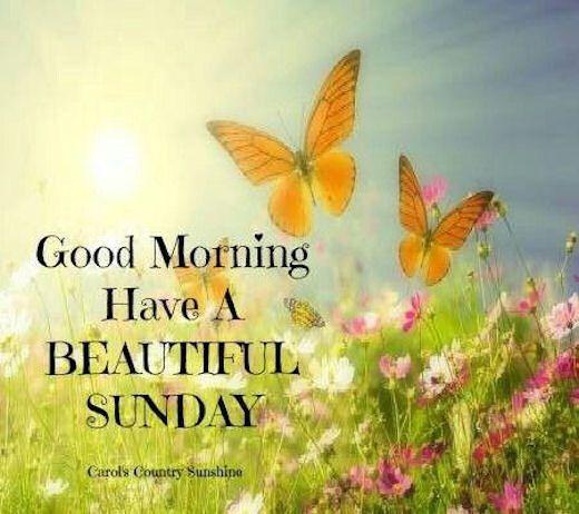 Good Morning Sunday Clipart 42px Image 8