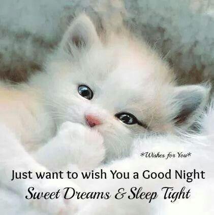 25+ best ideas about Good Night Sweet Dreams on Pinterest.