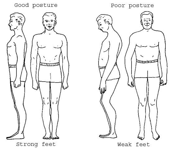 Posture Clip Art.